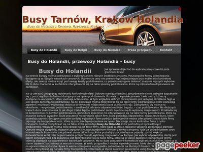 Busy do Holandii, Przewozy do Holandii