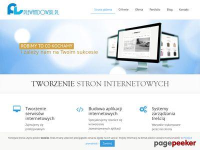 Strony Internetowe Łęczyca - Piotr Lewandowski