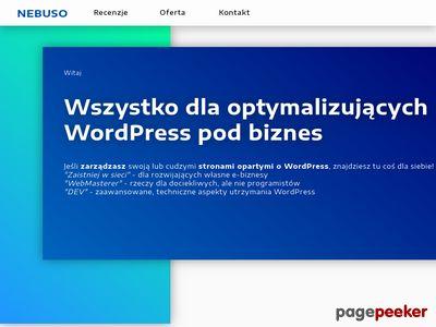 Dawid Rzepczyński Network Business Solutions