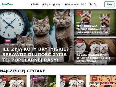Arazoo.pl